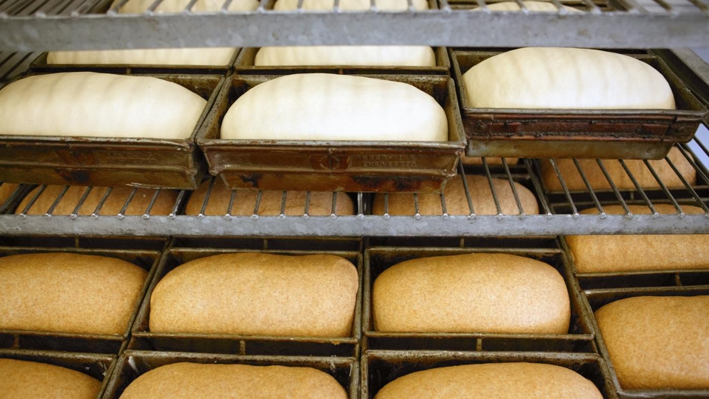 cách làm bánh mì mặn chà bông11